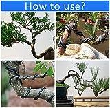5 Roll Bonsai Wires Bonsai Tools Kit Tree Wire 82
