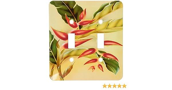 Home Improvement 3dRose lsp/_163394/_2 Image of Hawaiian Bird of Paradise Light Switch Cover 3D Rose