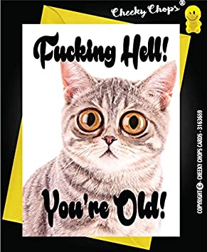 Funny Happy Birthday Card From Cat Theme Joke Rude Humour For Owner Lover Lady C53