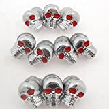 Areyourshop 10 X Chrome Skull License Plate Windshield Bolts Screw