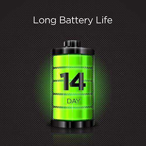 Amazfit GTS 2 Mini Fitness Smart Watch, Super-Light Thin Design, 14-Days Battery Life, 70+ Sports Modes, SpO2 Level Measurement, Heart Rate, Sleep, Stress Level Monitoring (Sage Green)