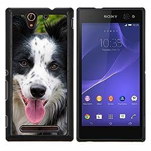 TECHCASE---Cubierta de la caja de protección para la piel dura ** Sony Xperia C3 ** --Raza Border Collie perro de mascota Hocico