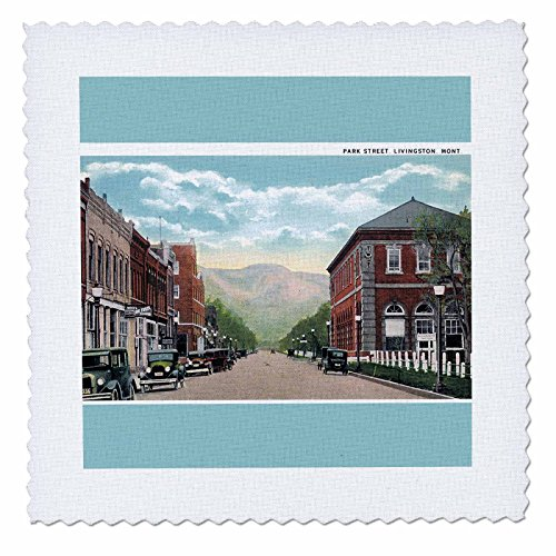 Street Scene Antique (3dRose qs_170273_5 Park Street Livingston Montana Street Scene with Antique Cars Quilt Square, 14 by 14-Inch)