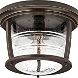 Progress Lighting P5638-108 Traditional/Casual 1-100W Med Outdoor Ctc, Oil Rubbed Bronze