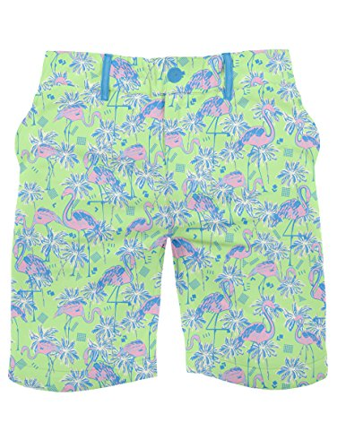Men's Flamingo Print Shorts - Ultra-Soft Elastic Button Short Shorts: X-Large (80s Clothing For Men)