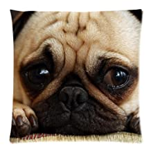 Animal Dog Pet Puppy Pug Pillow Cushion Case Throw Pillow Covers Pillow Inner Included Soft Bedding 18x18 (One side) New Fashion