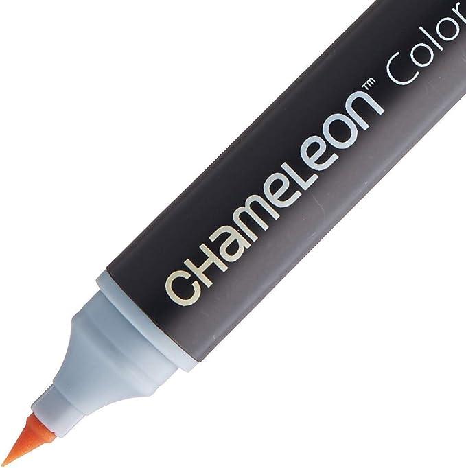 Chameleon toni di colore Confezione 5 Penne Inchiostro alcool sistema ** MIGLIOR PREZZO DEL MONDO **