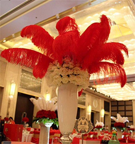 Party Decor Feathers - 10 PCS Natrual Real Ostrich Feathers with Multi Colors DIY Art Decal for Home Wedding Party Ballnight Decoration Hat DIY Scrapbooking Crafting (18-20 inch, Red)