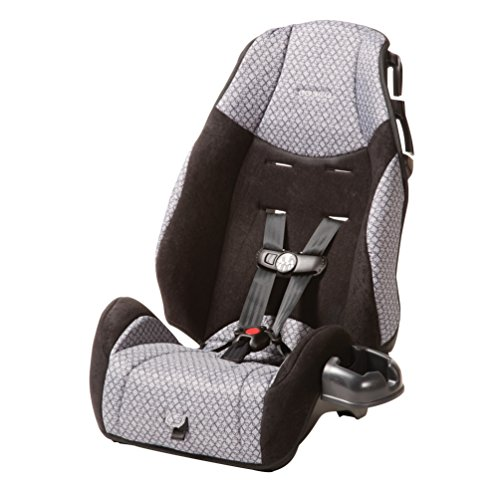 Cosco – Highback 2-in-1 Booster Car Seat – 5-Point Harness or Belt-positioning – Machine Washable Fabric, Hawthorne