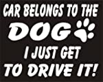 Car Belongs To The Dog I Just Get To...