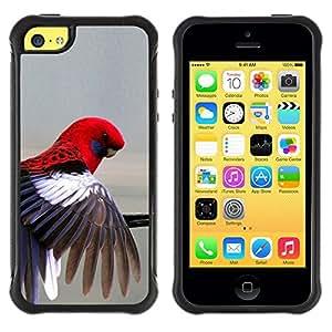 Suave TPU GEL Carcasa Funda Silicona Blando Estuche Caso de protección (para) Apple Iphone 5C / CECELL Phone case / / red parrot grey pastel tropical bird feather /