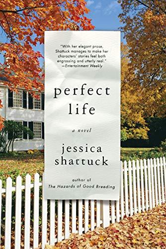 Perfect Life: A Novel ()
