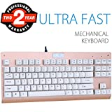 Mechanical Gaming Keyboard, Aitalk 87 Keys Anti-ghosting Waterproof Tenkeyless Keyboard with Blue Switches Easy Access Media Keys Wired Keyboard for Mac PC Gamers and Typists (Gold)