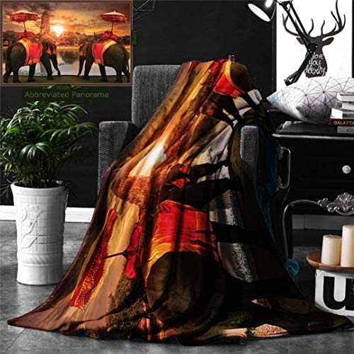 (Ralahome Unique Custom Double Sides Print Flannel Blankets Elephants Dressing Traditional Costumes Standing In Front Pagoda Patience Sage Symb Super Soft Blanketry Bed Couch, Twin Size 70 x 60)