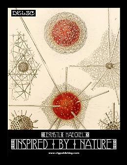 Ernst Haeckel Inspired by Nature by [Widmann, Melanie Paquette]