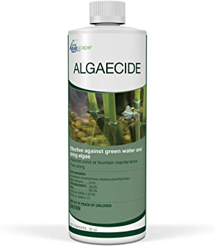 Aquascape 96024 Algaecide Treatment for Koi Fish Ponds and Water Gardens, 32-Ounce, Clear