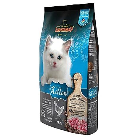 Leonardo Kitten - Comida seca 7,5 kg Un alimento saludable para gatos: Amazon.es: Productos para mascotas