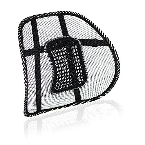 Lumbar Support - Ergonomic Lower Back Support For Office Chair, Posture Correction - Instant Pain & Pressure Relief + Breathable Mesh Texture For Better Air (Series Everyday Task Chairs)
