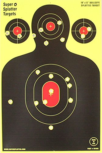 12 x 18 target - 6