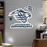 Chesapeake Bayhawks Logo REAL.BIG. Fathead by Fatheads