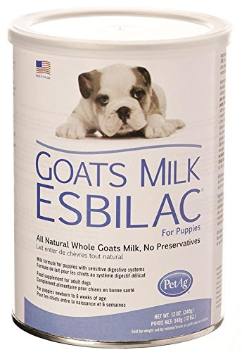 PetAg Goat's Milk Esbilac Powder 12oz (Esbilac Milk Replacer Powder)