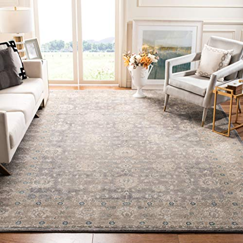 Safavieh Sofia Collection SOF330B Vintage Light Grey and Beige Distressed Area Rug (9' x 12') ()