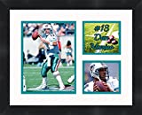 Dan Marino - Miami Dolphins, Framed 11 x 14 Matted Collage Framed Photos Ready to hang