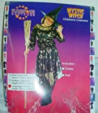 Childrens Halloween Mystic Witch Costume Size Large (HW44) (disfraz)