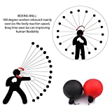 BV Reflex Punching Ball | Ideal Punching Speed