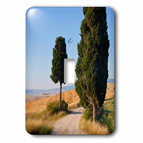 danita-delimont-italy-winding-road-val-d-orica-tuscany-italy-light-switch-covers-single-toggle-switc