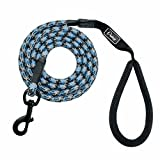 LOVELY Nylon Reflective Dog Leash Pet Training Leashes For Small Medium Large Dogs Blue L