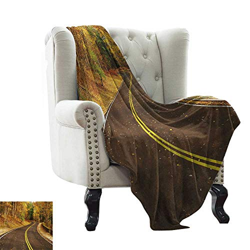 Davishouse Super Soft Blankets Autumn Scene with Curvy Road in The Forest at Letchworth State Park New York City USA Sofa Chair 70