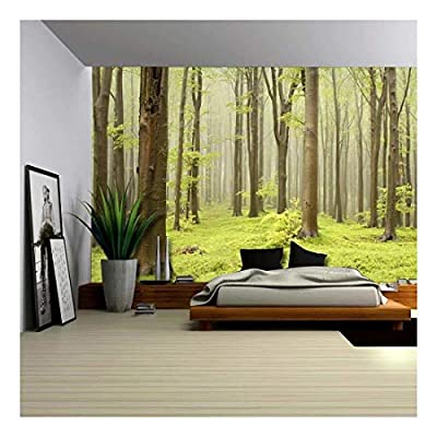 Stunning Technique, Quality Creation, Green Misty Forest Mural Wall Mural