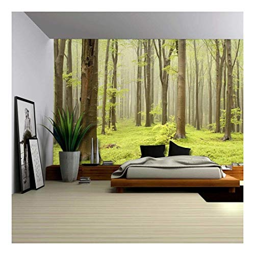 - wall26 - Green Misty Forest Mural - Wall Mural, Removable Sticker, Home Decor - 100x144 inches