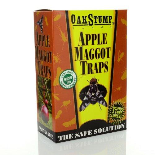 OakStump Farms Apple Maggot Trap, set of 3