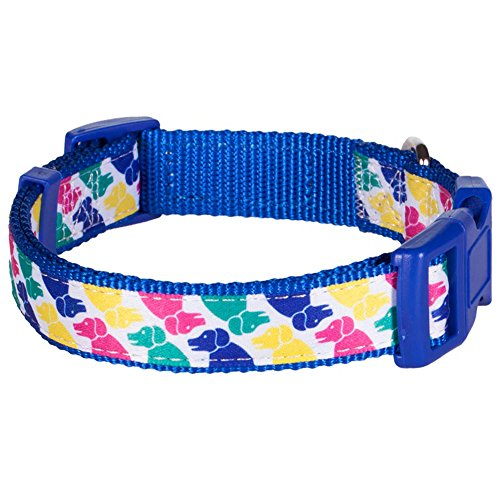 "Blueberry Pet Iconic Multicolor Pup Statement Dog Collar, Neck 14.5""-20"", Medium, Collars for Dogs"