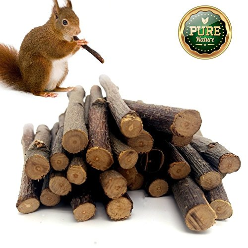 518TPBpO kL - LPLED 200 Gram Organic Apple Sticks Pet chew Toys and Food for Chinchilla Rabbit Squirrel Guinea Pigs Hamster Parrot Bird (About 30-50 Sticks)
