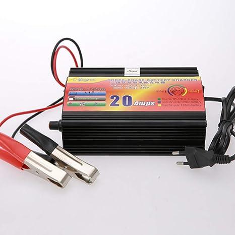 WSHZ Cargador de batería para Coche, 12 V20 A, Cargador de ...