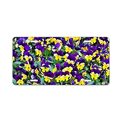"YEX Abstract Beautiful Bloom blooming15 License Plate Frame Car Licence Plate Covers Auto Tag Holder 6"" x 12"""