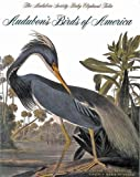 img - for Audubon's Birds of America: The Audubon Society Baby Elephant Folio book / textbook / text book