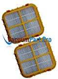 (2) Eureka Hf-10 Pleated Hepa Filter W/activated Charcoal Vacuum...