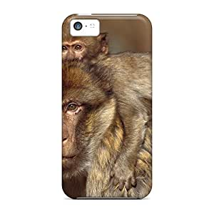 Snap-on Case Designed For Iphone 5c- Barbary Macaques Morocco