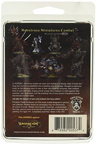 Privateer Press - Hordes - Trollblood: Epic Warlock Hoarluk Doomshaper Model Kit 4