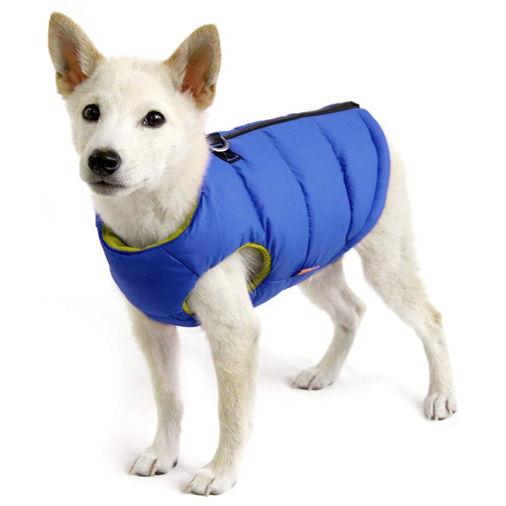 Gooby - Padded Vest, Dog Jacket Coat Sweater with Zipper Closure and Leash Ring, Solid Blue, Medium by Gooby