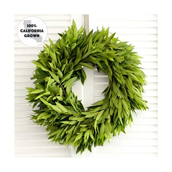 Fresh Wreath – Bay Leaf (various sizes available) – Front Door Decor – Church Door Decor for Wedding – Bridal Shower – Baby Shower