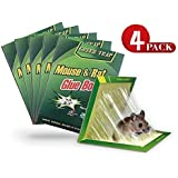 Safari Garden [Pack of 4] Original Large Size Mouse Glue Traps, Sticky Super Hold Glue Board Trap for Mice Rats Rodents Cockroaches Bugs Ants Spiders Scorpions