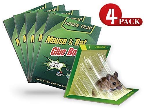 (Safari Garden [Pack of 4] Original Large Size Mouse Glue Traps, Sticky Super Hold Glue Board Trap for Mice Rats Rodents Cockroaches Bugs Ants Spiders Scorpions)