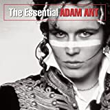 Adam The Ants Review and Comparison