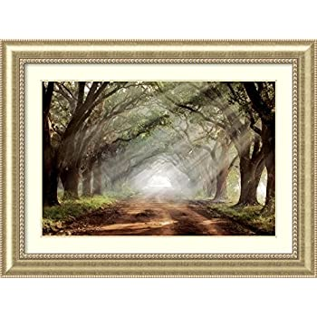 Amazon.com: Evergreen Plantation by Mike Jones Premium Bronze Framed ...