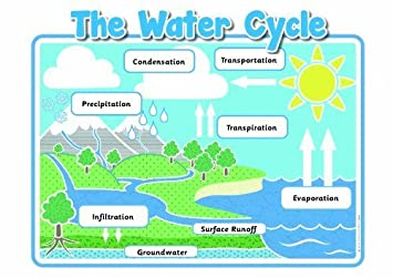 The Water Cycle Poster Pack (A4 Laminated): Amazon.co.uk: Office ...